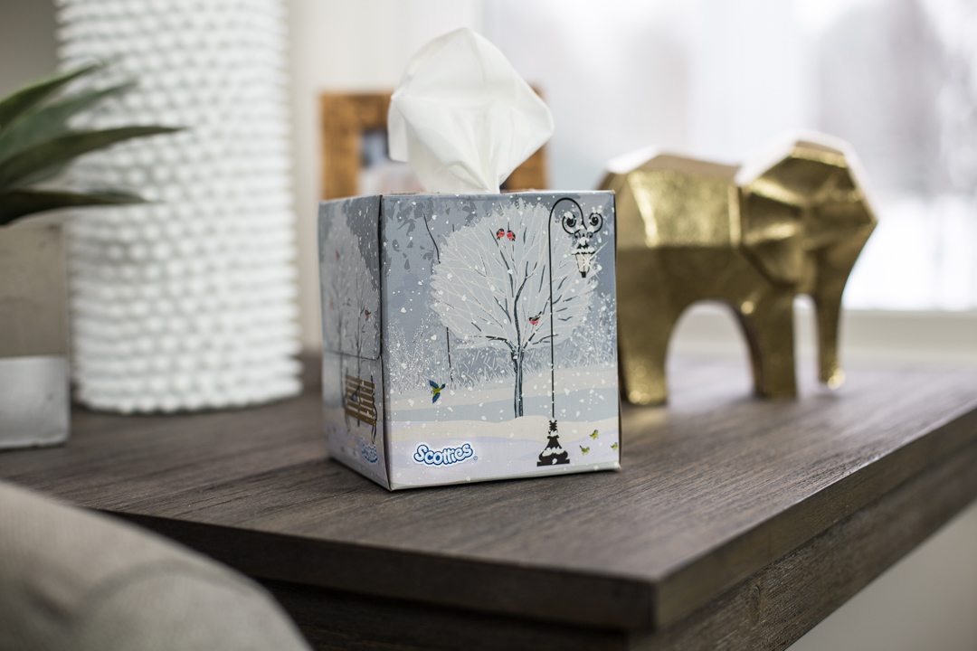Scotties Winter Themed Facial Tissue Boxes