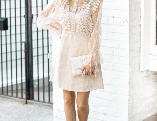 Summer Sheer Lace Dress