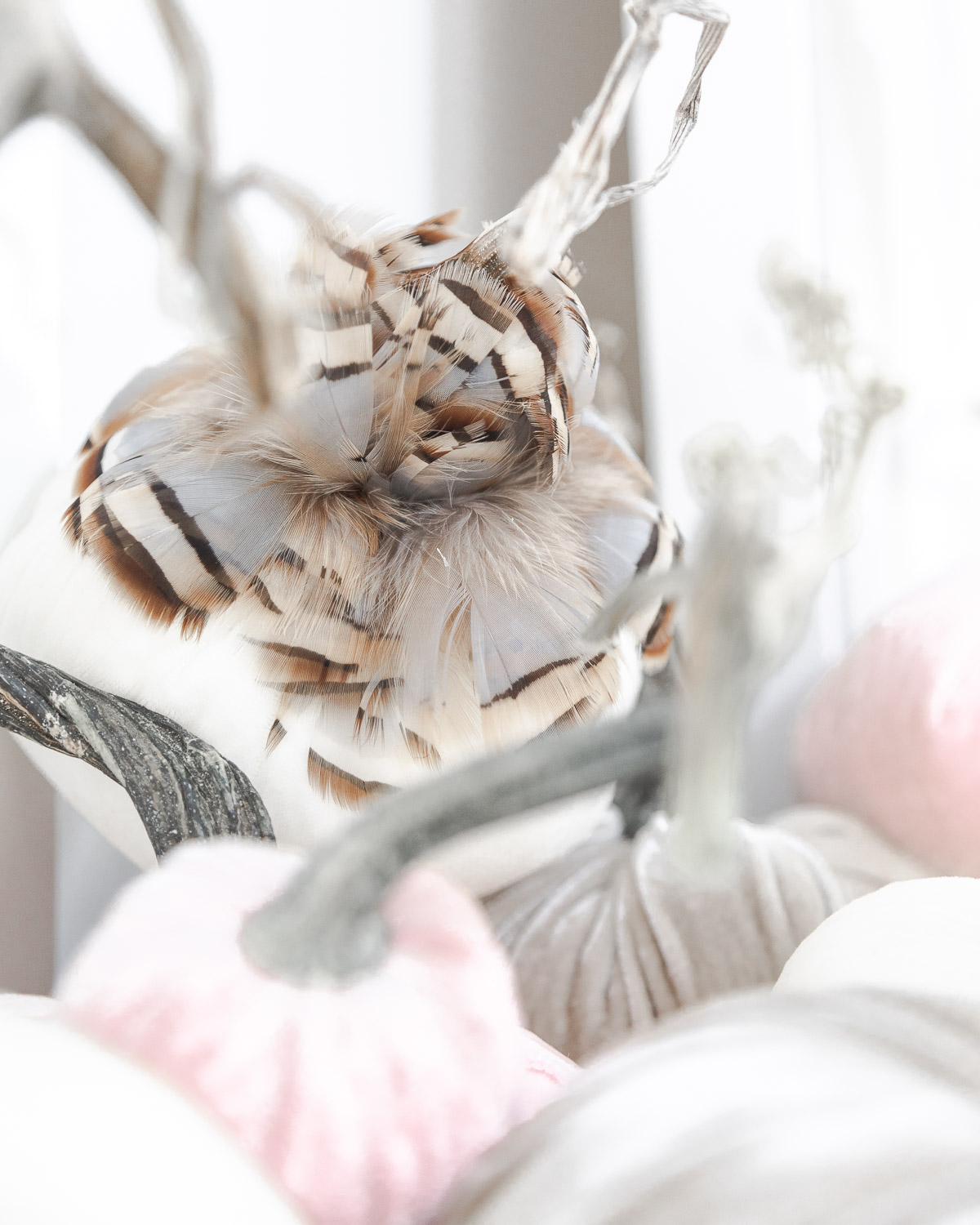 feather details for fall decor The Glamorous Gal