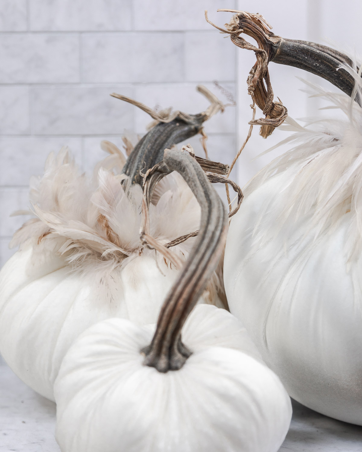 velvet pumpkins with feather details from hot skwash The Glamorous Gal