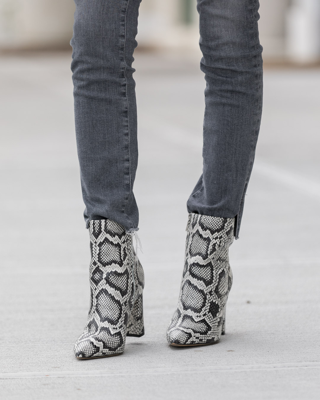 marc-fisher-snake-print-booties-the-glamorous-gal